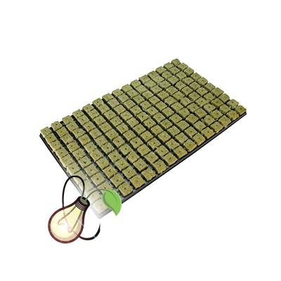 Grodan Large 77 Cube Tray
